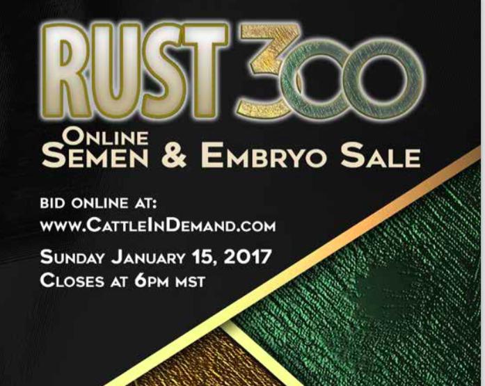 rust mountain view ranch rust 300 online semen embryo sale 1152017