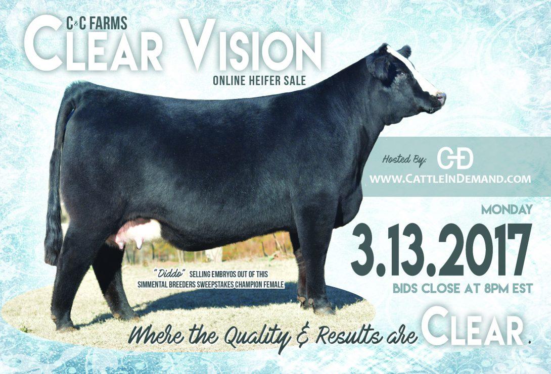 Clear Vision postcard v4