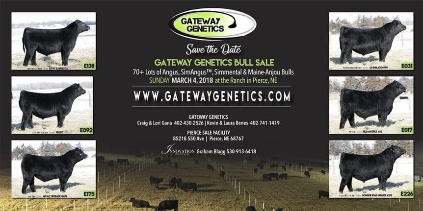 Gateway Banner vfinal